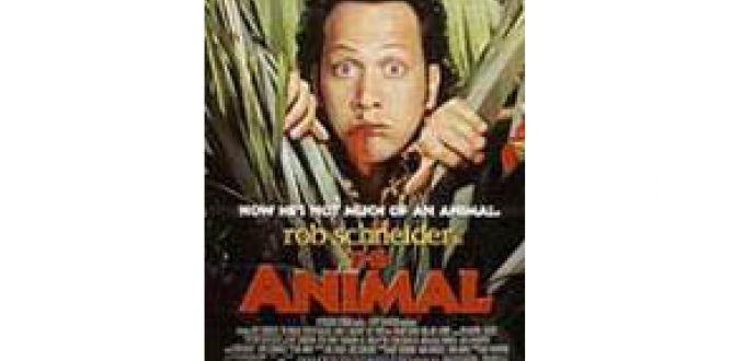Movie The Animal by Jill Vanderwood